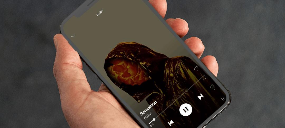 Spotify CANVAS
